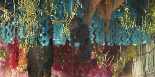 Draped from the ceiling were colorful streamers as well as meats (a salami is at left) as well as taxidermied animals, such as this monkey.