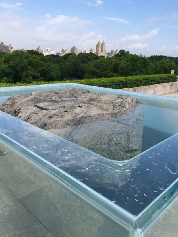 Pierre Huyghe's Roof Garden Commission at the Met Museum in NYC.