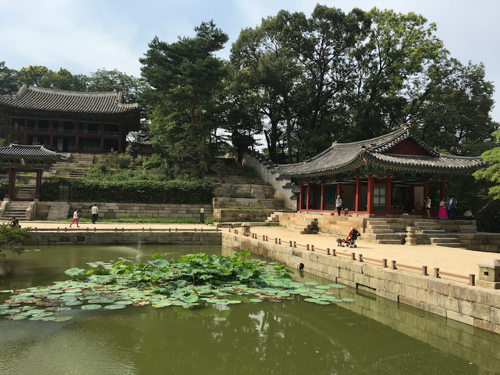 Lily pads in a pond amid traditional buildings in the Secret Garden, Seoul, South Korea, of the Changdeokgung Palace