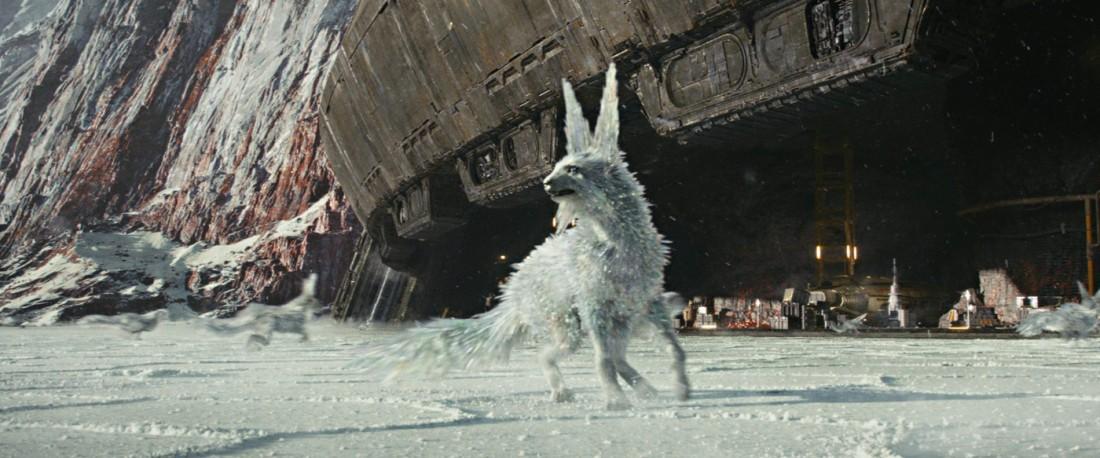 crystal-fox-the-last-jedi-2